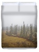 The Boreal Forest On A Foggy Day Duvet Cover