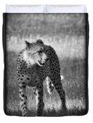 The Cheetah  Duvet Cover