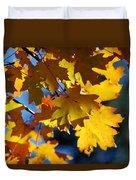 The Colors Of Autumn In Arizona  Duvet Cover