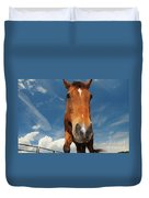 The Curious Horse Duvet Cover
