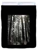 The Forest Through The Trees Duvet Cover