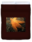 The Great Starfish Duvet Cover