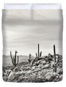 The High Desert  Duvet Cover