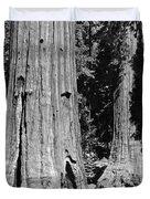 The Mariposa Grove In Yosemite Duvet Cover