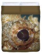 The Mosaic Eye Of The Venemous Duvet Cover