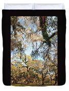 The Oaks Of City Park Duvet Cover