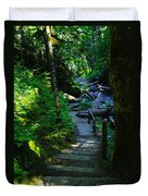 The Path To Iron Creek  Duvet Cover
