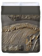 The Ribs And Spine Of Ichthyosaur Duvet Cover