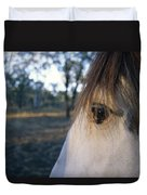 The Staring Eye Of A Clydesdale Horse Duvet Cover