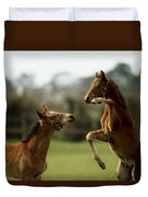 Thoroughbred Foals Playing Duvet Cover
