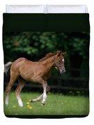 Thoroughbred Horse, National Stud Duvet Cover