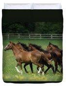 Thoroughbred Horses, Ireland Duvet Cover