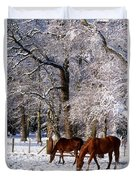Thoroughbred Horses, Mares In Snow Duvet Cover