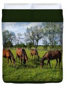 Thoroughbred Horses, Yearlings, Ireland Duvet Cover