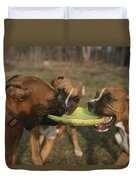 Three Boxer Dogs Play Tug-of-war Duvet Cover
