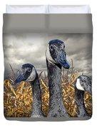 Three Canada Geese In An Autumn Cornfield Duvet Cover