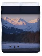 Three Northern American Bald Eagles Duvet Cover