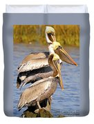 Three Pelicans On A Stump Duvet Cover