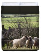 Three Sheep In A Field With Stone Duvet Cover