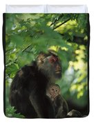 Tibetan Macaque Nursing Baby Duvet Cover