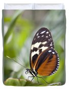 Tiger Longwing Butterfly Heliconius Duvet Cover