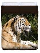 Tiger Observations Duvet Cover