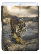 Tiger Panthera Tigris Cub, Native Duvet Cover