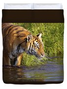 Tiger Standing In Water Duvet Cover