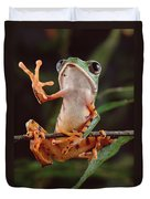 Tiger Striped Leaf Frog Waving Duvet Cover