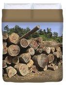 Timber At A Logging Area, Danum Valley Duvet Cover