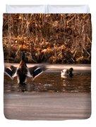 Time For Me To Fly Duvet Cover by LeeAnn McLaneGoetz McLaneGoetzStudioLLCcom