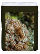 Tiny Cryptic Brown And Grey Shrimp Duvet Cover
