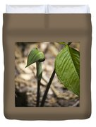 Tiny Jack In The Pulpit Duvet Cover