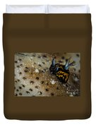 Tiny Nudibranch On Sea Cucumber Duvet Cover