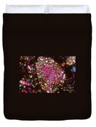 Tlm Of Chondrite Duvet Cover