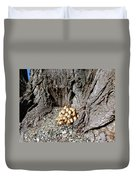 Toadstools In The Gravel Duvet Cover by Will Borden