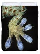 Tokay Gecko Gecko Gecko Underside Duvet Cover