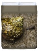 Top Shell Clanculus Sp Duvet Cover