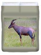 Topi Antelope Duvet Cover