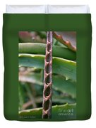 Torch Aloe Symmetry Duvet Cover