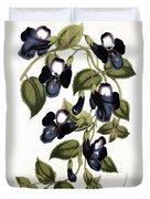 Torenia Asiatica Pulcherrima Duvet Cover