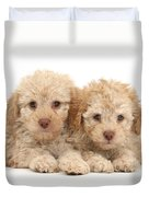 Toy Labradoodle Puppies Duvet Cover