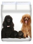 Toy Poodle Family Duvet Cover