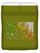 Transition Of Autumn Color Duvet Cover