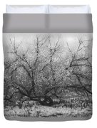 Tree Of Enchantment Duvet Cover by Debra and Dave Vanderlaan