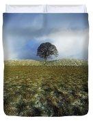 Tree On A Landscape, Giants Ring Duvet Cover