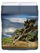 Tree Path Bridge Duvet Cover