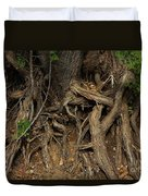 Tree Root's In The Creek Bed Duvet Cover