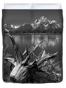 Tree Stump On The Shore Of Lewis Lake At Yellowstone Duvet Cover