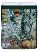 Tree Trio In Lichen At Hawn State Park Duvet Cover